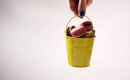 Cubeta de Macarons Fotografia de Stock