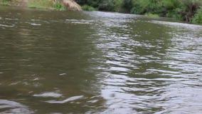 A cubeta do rio desce lentamente vídeos de arquivo