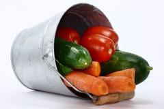 Cubeta e vegetais Imagem de Stock Royalty Free