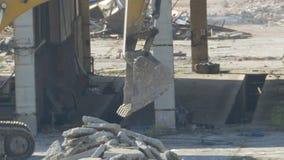 Cubeta movente da máquina escavadora video estoque