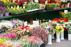 Cubetas das flores imagens de stock royalty free