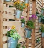 Cubetas decorativas com flores Fotografia de Stock