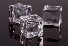 Cubetti di ghiaccio Fotografie Stock Libere da Diritti