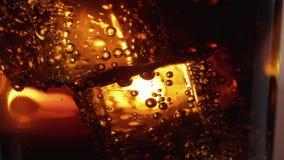 Cubetti di ghiaccio di galleggiamento in un vetro di cola - fine sul macro colpo al rallentatore archivi video