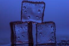 Cubetti di ghiaccio sugli ambiti di provenienza colorati Fotografie Stock Libere da Diritti