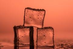 Cubetti di ghiaccio sugli ambiti di provenienza colorati Fotografia Stock Libera da Diritti