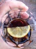 Cubetto di ghiaccio affettato del limone con la bevanda nel vetro Immagini Stock Libere da Diritti