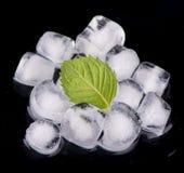 Cubetto di ghiaccio con le foglie di menta Immagini Stock