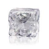 Cubetto di ghiaccio prima di fondo bianco Fotografia Stock