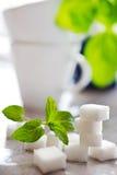 Cubi dello zucchero bianco con la menta fresca Fotografia Stock Libera da Diritti