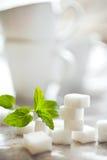 Cubi dello zucchero bianco con la menta fresca Immagini Stock Libere da Diritti