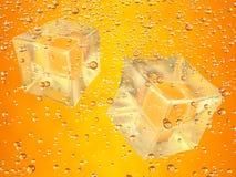 Cubi di ghiaccio arancioni Fotografia Stock