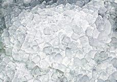Cubi di ghiaccio con la lampadina Fotografia Stock Libera da Diritti