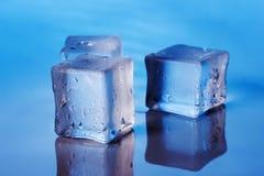 Cubi di ghiaccio sui precedenti blu Fotografia Stock Libera da Diritti
