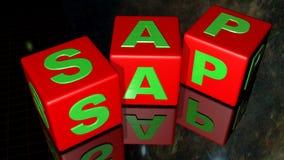 Cubi di SAP Fotografie Stock Libere da Diritti