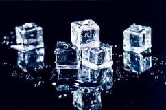 Cubi ghiacciati che si fondono su una tavola blu con la riflessione Acqua Fusione del ghiaccio Fotografia Stock Libera da Diritti