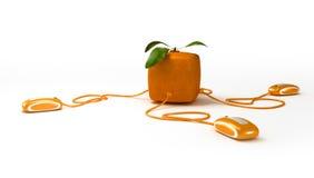 Cubic Orange communications Royalty Free Stock Images