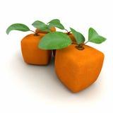 Cubic orange duo Stock Image