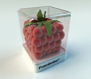 Cubic raspberry exhibition Stock Images