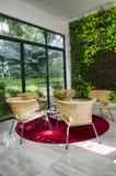 Cubierta cómoda de la sala de estar del ambiente del eco verde Imagen de archivo libre de regalías