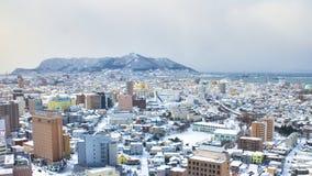 Cubierta de la nieve de Hakodate, Japón foto de archivo libre de regalías