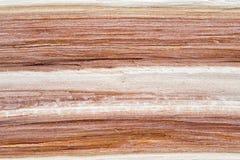 cubierta de madera tajada Fotografía de archivo