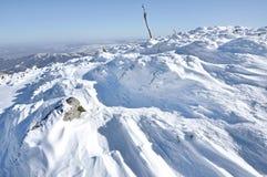 Cubierta de nieve fresca Fotografía de archivo libre de regalías