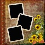 Cubierta del álbum con el marco y las flores Imagen de archivo