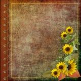 Cubierta del álbum con las flores Fotos de archivo libres de regalías