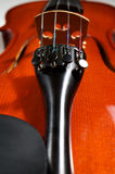 Cubierta del violín Imágenes de archivo libres de regalías