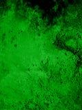 Cubierta verde Foto de archivo