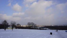 Cubiertas de nieve en el parque de un bosque fotos de archivo libres de regalías