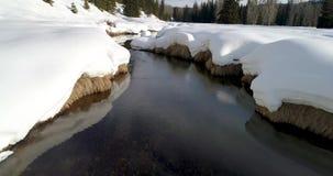 Cubiertas y líneas de nieve una pequeña corriente que eso lleva a un bosque metrajes