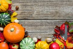 Cubierto de la tabla de la acción de gracias con las calabazas, las manzanas, las nueces y las hojas de otoño cosechadas thanksgi Imagen de archivo