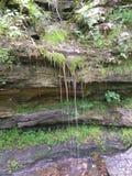 Cubierto de musgo secado encima de la cascada Imagenes de archivo