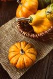Cubierto del otoño Fotos de archivo libres de regalías