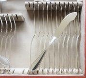 Cubiertos de los pescados de plata, sistema del cuchillo Imágenes de archivo libres de regalías