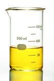 Cubilete con el líquido amarillo en blanco fotos de archivo libres de regalías