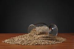 Cubilete con las semillas de la cebada en la tabla de madera Fotos de archivo libres de regalías