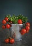 Cubo con los tomates Imagen de archivo