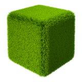 Cubo 3D dell'erba Immagini Stock Libere da Diritti