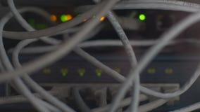 Cubo da rede do roteador do modem com conex?o do cabo Ethernet, conceito video estoque