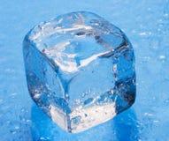 Cubo de gelo Foto de Stock Royalty Free