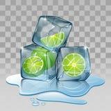 Cubo de gelo com cal Fotos de Stock Royalty Free