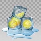 Cubo de gelo com limão Fotos de Stock Royalty Free