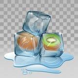 Cubo de gelo com quivi Fotos de Stock
