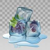Cubo de gelo com uva Fotos de Stock Royalty Free