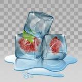 Cubo de gelo com uva Fotos de Stock