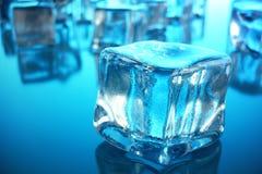 cubo de gelo da rendição 3D no fundo azul do matiz Cubo congelado da água Foto de Stock Royalty Free