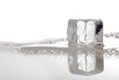 Cubo de gelo de derretimento Imagens de Stock